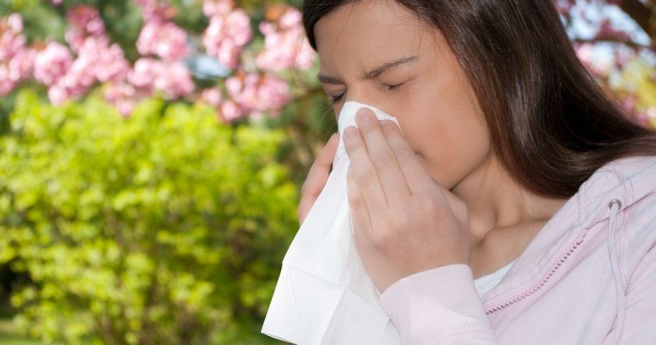 Test de Alergia InmunoCap Rapid